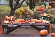 Fall Themed Holiday Table Sett...