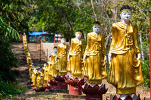 Long Line Of Golden Buddhas Li...