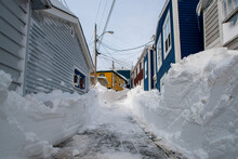 A Narrow Street In St. John's,...