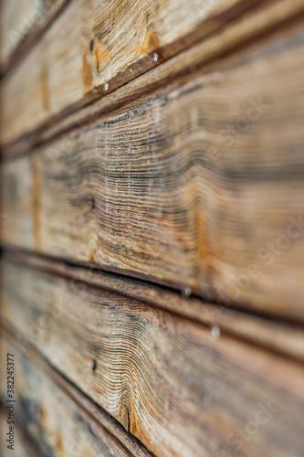 Obraz Drewno macro _01 - fototapety do salonu