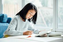 Teenager Girl Doing Homework A...