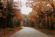 Bar Harbor Maine In Autumn