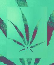 Experimental Cannabis / Marijuana Scan / Spray Acrylic Paint Glitch Background