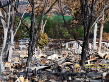 Oregon Fires
