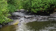 River Leading To Dangerous White Water Narrow - Rocky Stream In Green Forest