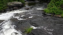 Rocky River Splashing Downstream - White Water Creek Over Black Rocks Surrounded By Green Vegetation