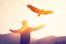Man Raise Hand Up On Top Of Mountain And Sunset Sky With Eagle Bird Fly Abstract Background.