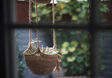 Selective Focus Shot Of A Jute Hanging Planter In A Garden