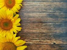 Three Bright Sunflowers On Woo...