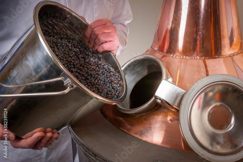 Obraz na płótnie Juniper berries being added to a copper gin still