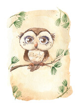 Owl Eagle Owl Bird Cute Sitting On A Branch Pine Tree Needles Beige Background Big Eyes Cartoon Watercolor Isolated Space Text Postcard
