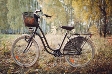 Vintage Woman Bicycle With Bas...