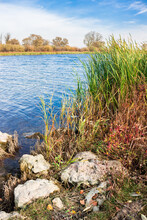The River Sok In Samara Region...