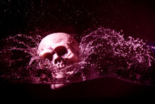 Human Plastic Skull Falling In Water Isolated On Black Background.Halloween Image.