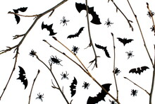 Background For Halloween Twigs...