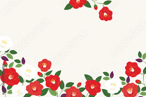 Vector background illustration with red and white camellia flowers Fototapet