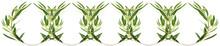 Frise De Couronnes D'oliviers