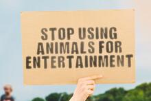 "The Phrase "" Stop Using Animal..."