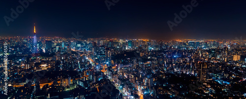 Obraz na plátně Tokyo, Japan cityscape view from high above