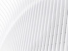White Stripe Background