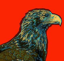 Image Of A Mountain Eagle On A...