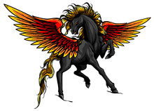 Pegasus. An Illustration Of The Mythological Horse Pegasus Rearing Up On Its Hind Legs. Vector