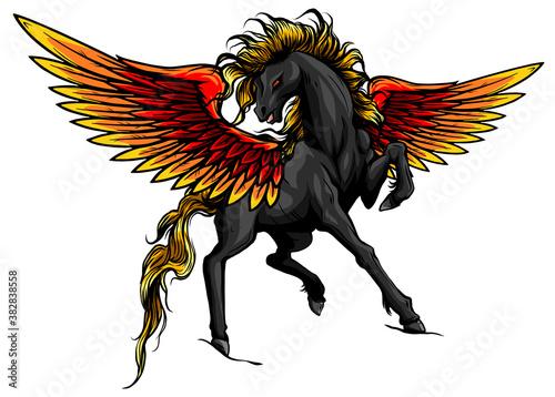 Obraz na plátne Pegasus