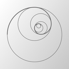 Abstract Illustration With Golden Ratio On Gray Background. Art&gold. Spiral Pattern. Line Drawing. Vector Illustration.