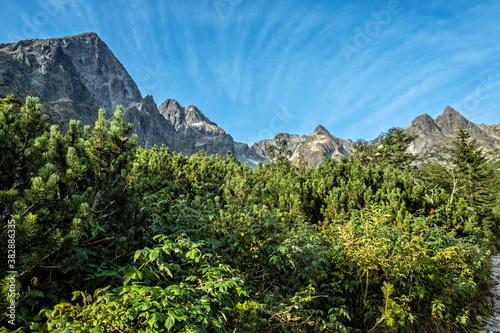 Fototapeta Green tarn valley, High Tatras mountains, Slovakia