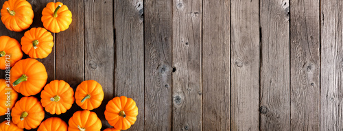 Fényképezés Autumn corner order of orange pumpkins over a rustic dark wood banner background
