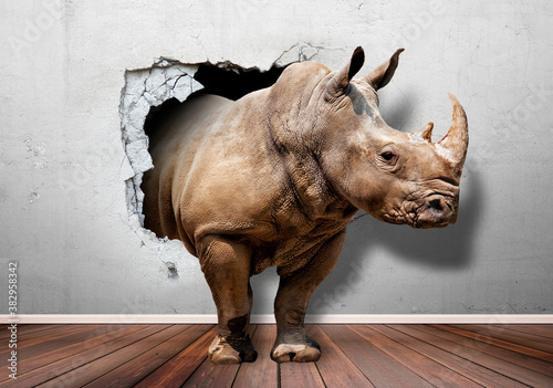 Wallpaper for children's room,rhinoceros from the wall,3 d picture , 3D Wallpaper