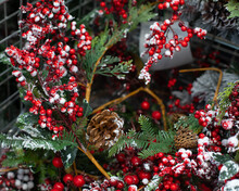 Christmas Decoration Background. Holly Branches With Berries In Hoarfrost. Christmas Symbols Snow, Pine Cone And Oak Holly Berries
