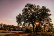 Sunny Autumn Evening Over The ...