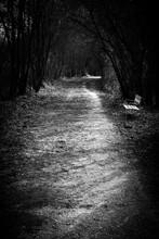 Camino De Melancolia