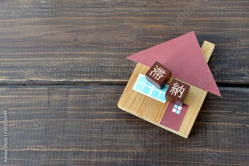 Stampa su Tela 住宅ローンの滞納イメージ
