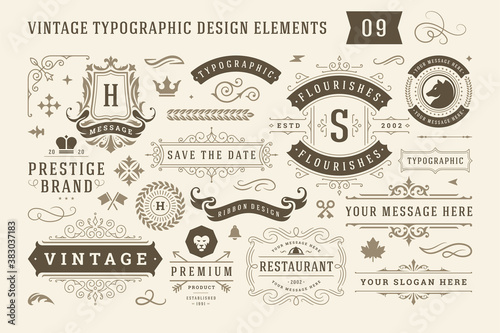 Obraz Vintage typographic design elements set vector illustration. - fototapety do salonu