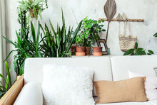 Light Sofa With Pillows Agains...