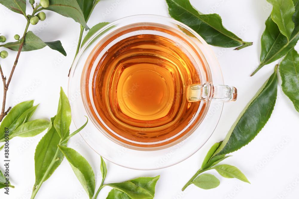 Fototapeta different types of fresh raw green tea leaf flower bud transparent glass teacup liquid tea on white background