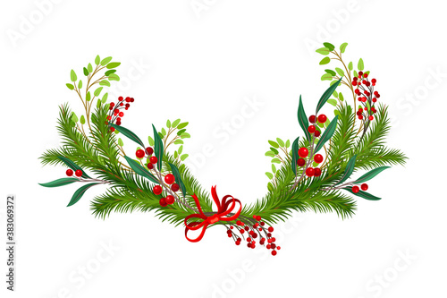 Fotografija Evergreen Branches of Coniferous Tree and Red Berry Arranged in Semicircular Vec