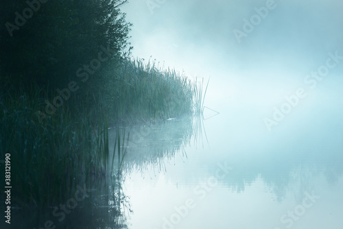 Fotomural Picturesque scenery of the forest lake in a thick white fog