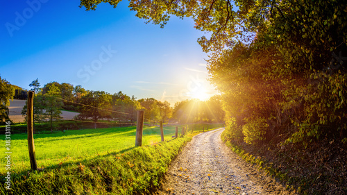 Wonderful autumn landscape with forest, meadows and a path in the light of the setting sun