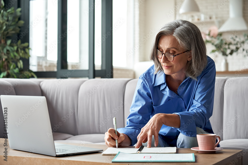 Fototapeta Happy stylish mature old woman remote working from home distance office on laptop taking notes. Smiling 60s middle aged business lady using computer watching webinar sit on couch writing in notebook.