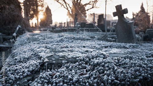 Cuadros en Lienzo Cemetery tombstone, headstone or stone in a cold autumn or fall frost ice in a c