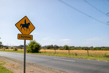 Horse Crossing Sign On Road