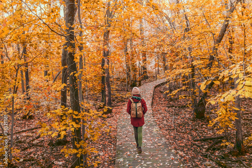 Woman walking in autumn foliage forest woods in city park with backpack Fototapet