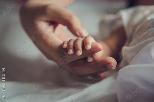 Fototapeta Newborn baby holding mother's hand.