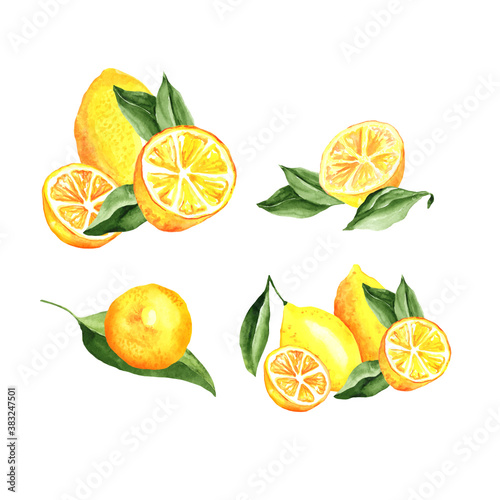 Fotografia, Obraz Lemons Arrangement Watercolor Set
