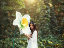 Portrait Of A Beautiful Girl Elf With Long Hair Stands In A Fantasy Forest And Hugs A Huge Daffodil Flower, Green Trees. A Woman In A White Vintage Dress And A Silver Diadem. Innocent Attractive Face
