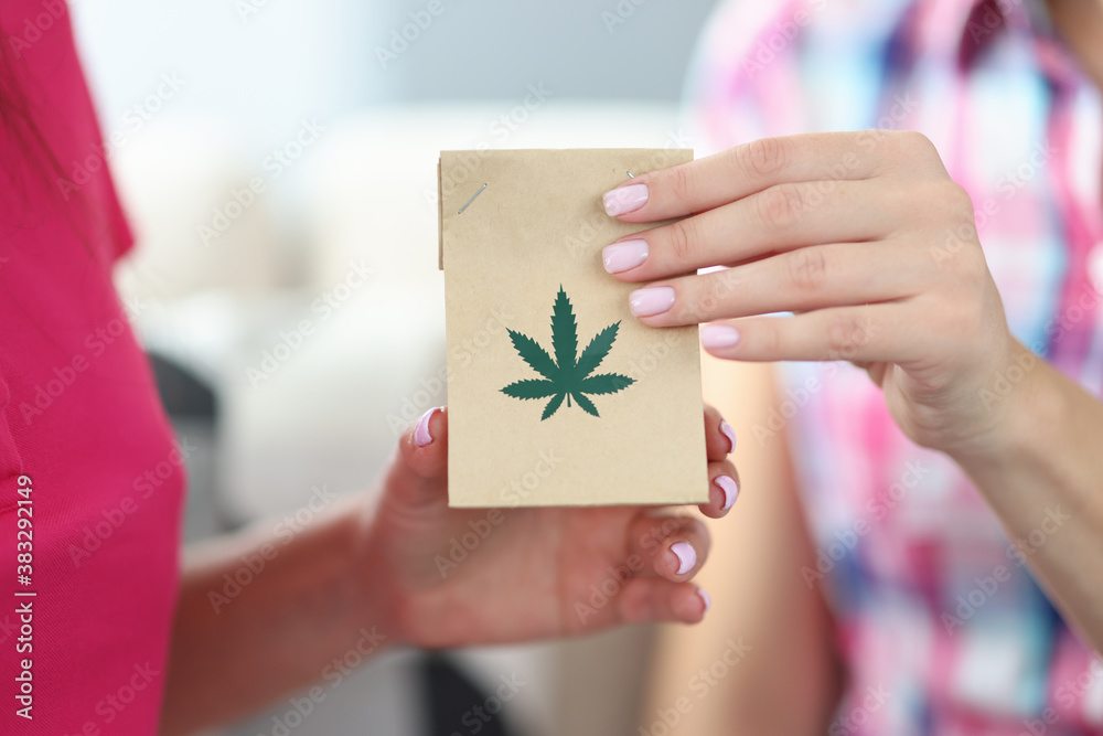 Fototapeta Female hands hold package with hemp leaves close-up. Legal delivery of marijuana narcotic substances concept.