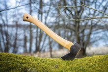 Axe Stuck In A Moss Covered Lo...